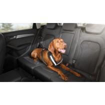 Audi Original Hundeschutzgurt Größe M